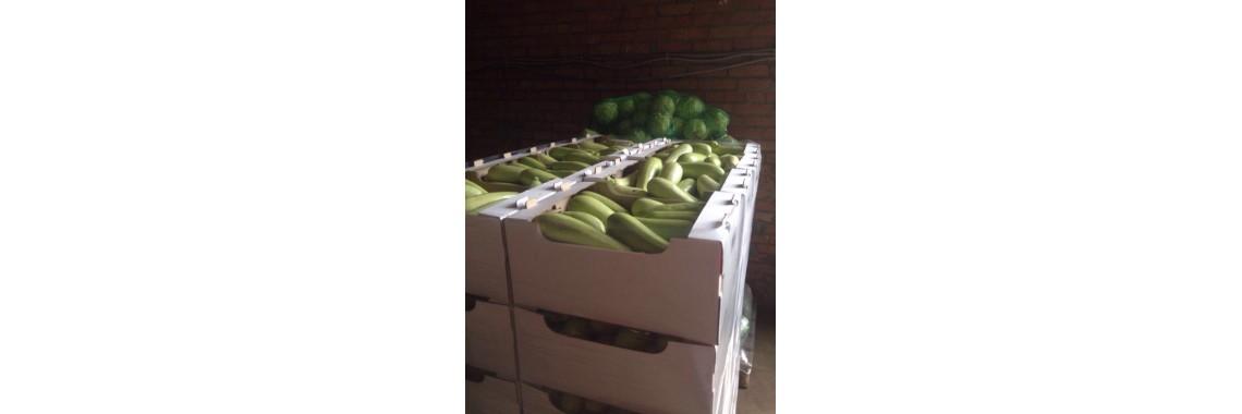Лоток под овощи